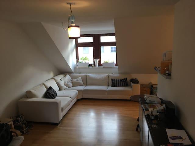 DG-Wohnung direkt im Zentrum - Dresden - Apartamento