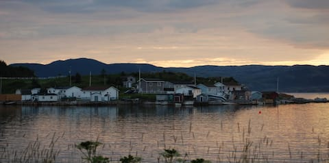 Viking Moose Accommodations and Adventure Tourism