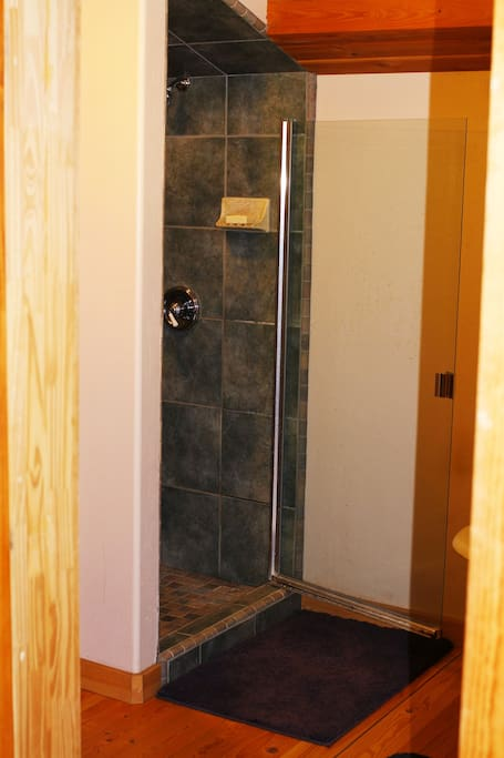 The Master Bathroom Shower