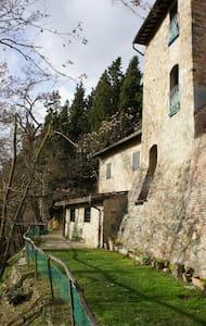 Toscana Torre dei Conti, vicino San Gimignano - IT - 城堡