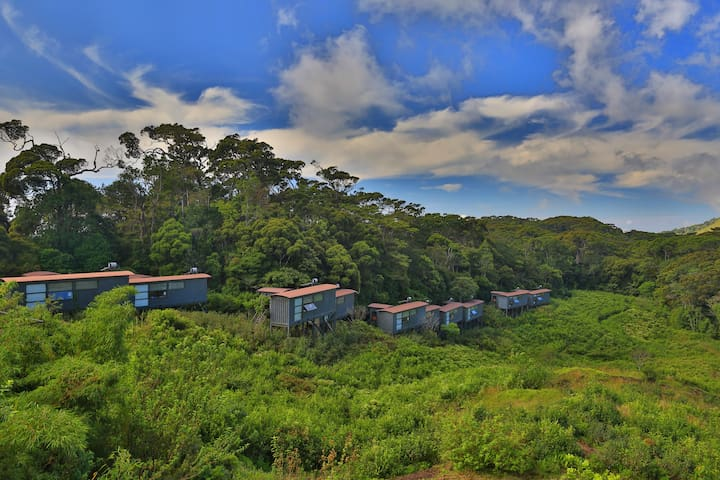The Rainforest Ecolodge - Sinharaja Rainforest, Deniyaya