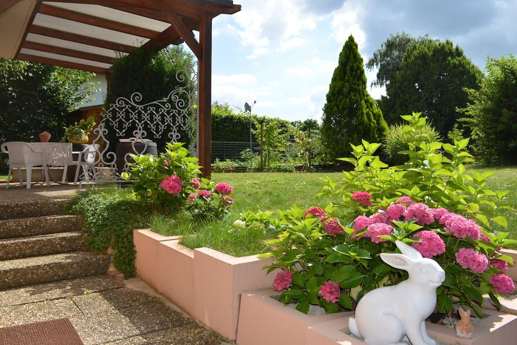 Entrée indépendante, la terrasse, son coin de verdure. Le Mannele Dormeur vous souhaite la bienvenue.