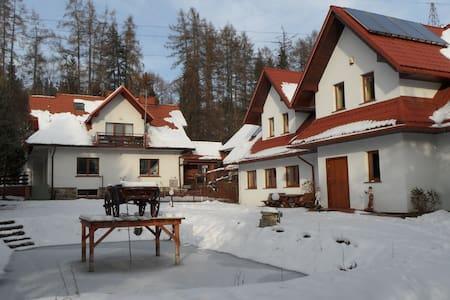 Ośrodek Wczasowy Kasztel - Niedzica - Boutique hotel - 1