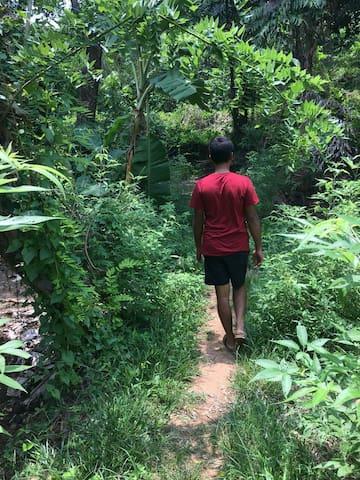 Trekking near home
