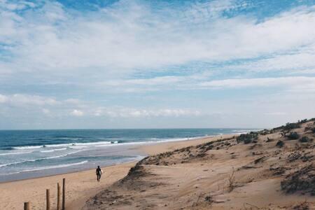 Studio au pied de la dune et face parc aquatique - Сеньоссе