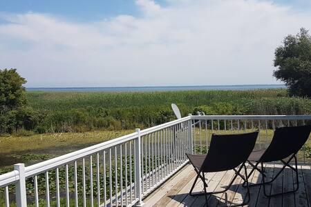 Lily Pad - backyard fishing, bird and nature watch