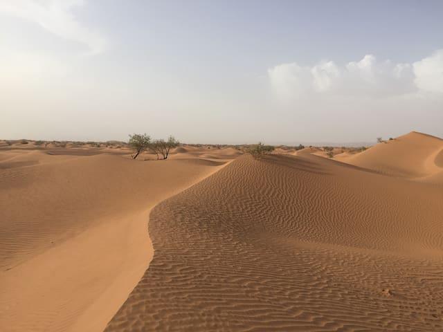 M'Hamid Desert Camp - Magie Du Désert - Dune Views