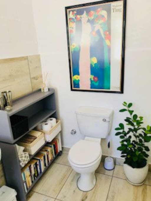 Bathroom with shelf space and plenty of reading material