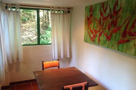 Studio La Heliconia, Playa Tortuga, Osa