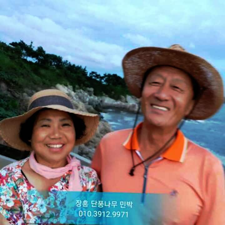 장흥 단풍나무 민박