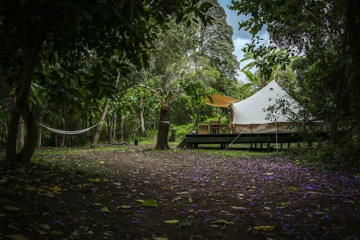 Luxury Camping Pinnacle Eco Retreat