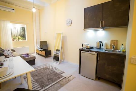 Enjoy easy living in recently renovated Studio