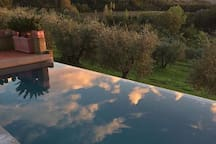 Our infinity pool of 20 m