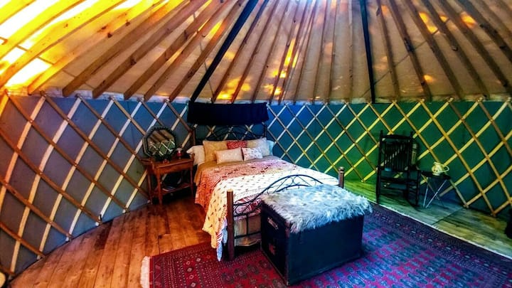 Achsah is our Mongolian Round Tent and Breakfast.