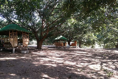 Mango Orchard Farm and Atv Park campsite P150
