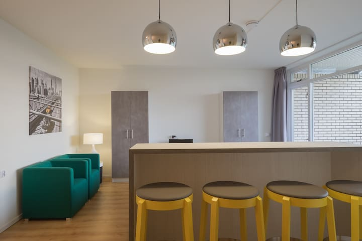 modern appartment close to sea - Noordwijk - アパート