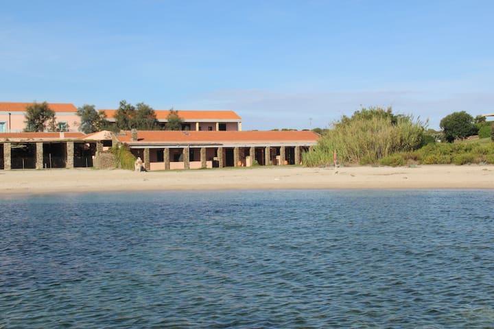 Tonnara Beach Front Bilo - Stintino - Apartamento