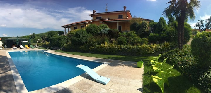 Villa Luigi - Swimming pool and vineyards