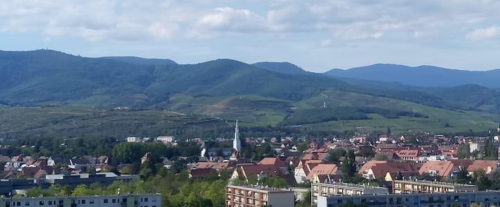 T3-Logement entier à Colmar
