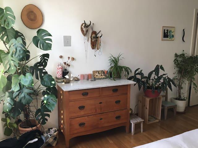 Helle und gemütliche Wohnung mitten in Zürich