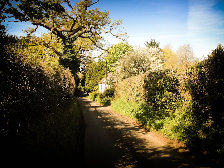 View from up the country lane