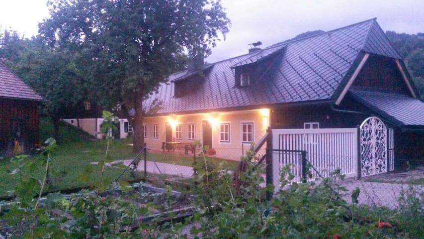 Altes Bauernhaus, neu renoviert - Schildbachrotte - Talo