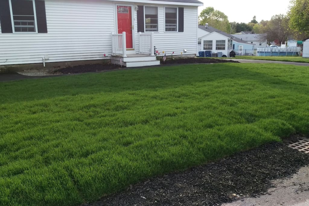 Front lawn -