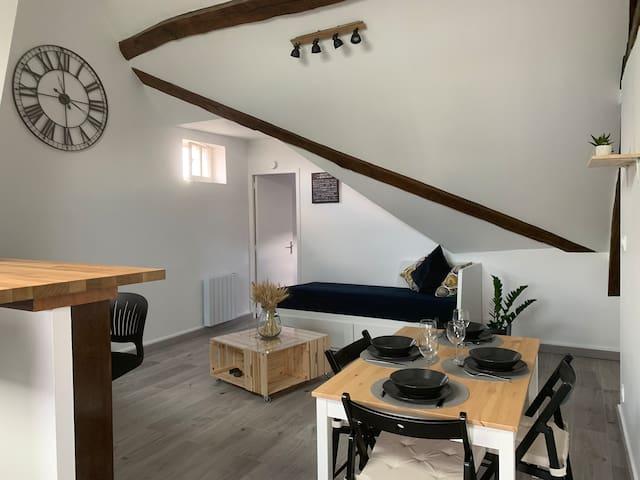 Bel appartement au cœur des Châteaux de la Loire