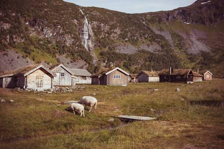 Ole's cabin - Geiranger World Heritage