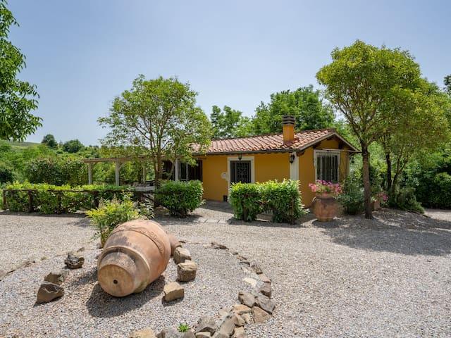 Villa Lavinia - 905-2