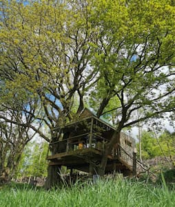 Hilltop Treehouse