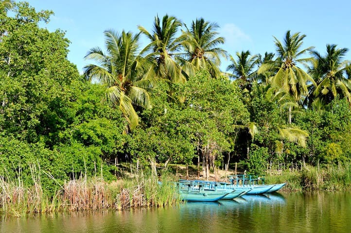 Nearby Attractions - Bird Watching by boat at the Kalametiya Bird Sanctuary (5 minutes walking distance)