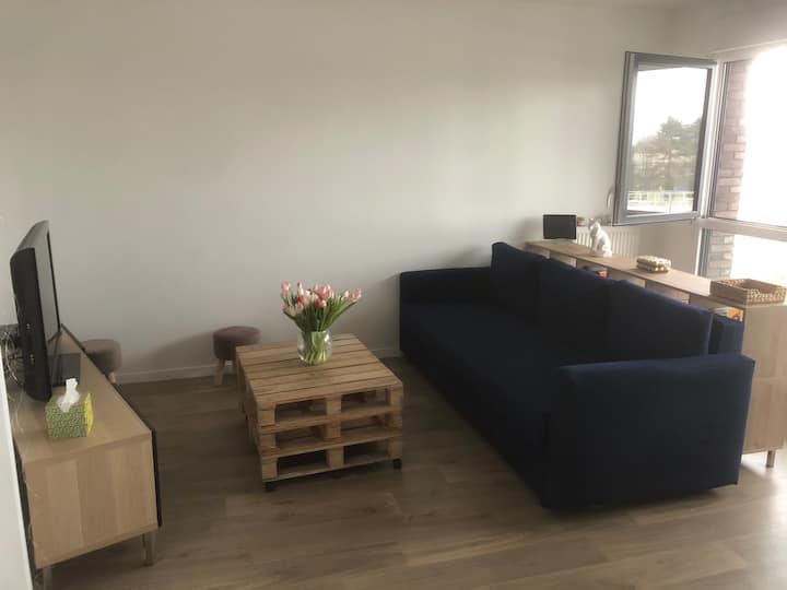 Chambre dans jolie logement, Rouen rive gauche