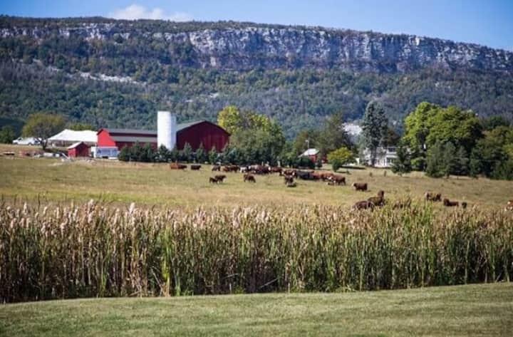 Hudson Valley Farm Retreat