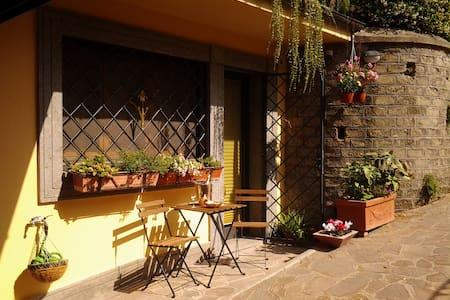 NEAR ROME LOVELY STUDIO IN FRASCATI - Grottaferrata - Flat