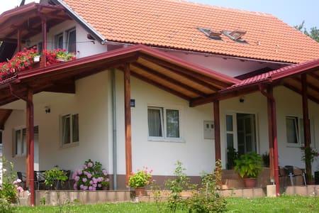 guesthouse Abrlic - Selište Drežničko