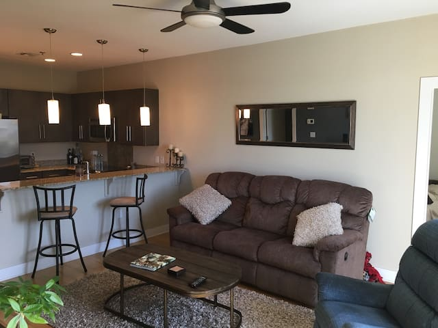 Private Room in shared Condo Downtown Living