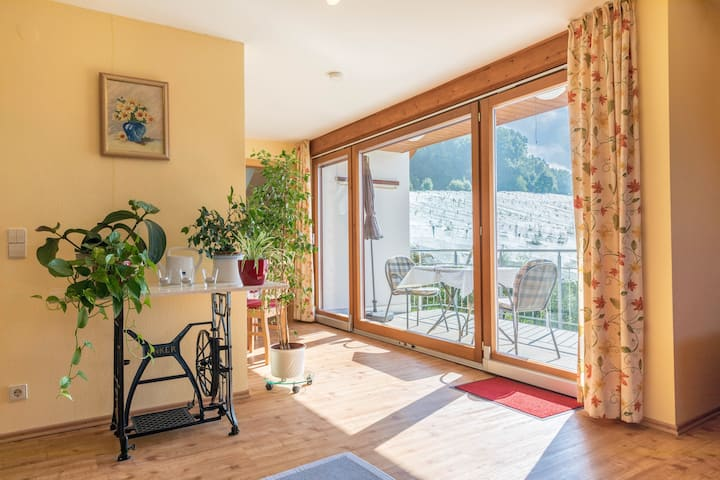 Cosy Vacation Apartment in House Irene with Balcony, Mountain View & Wi-Fi; Parking Garage Available