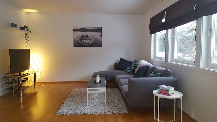 Comfortable and modern appartment in Voss