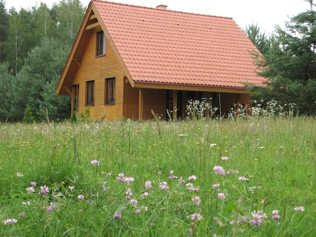 Chata Drwala - Guzowy Piec - Dům