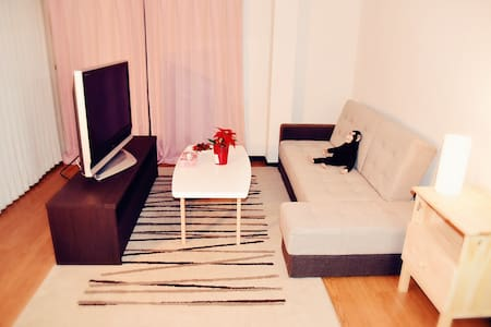 10nim by bus to dotonbori 3bedroom - Lägenhet