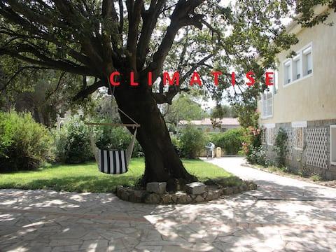 Appartement climatisé en rez de jardin