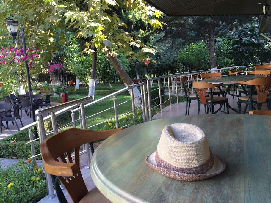 Sitenin Cafesi