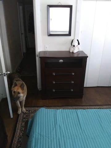 your room with optional guest