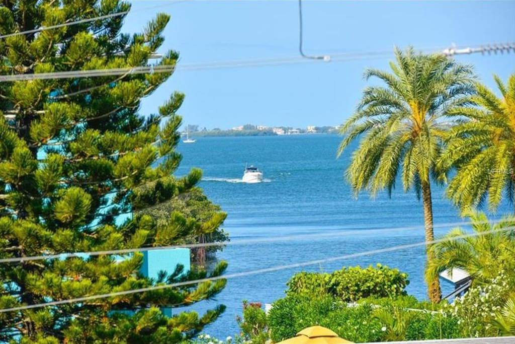Sarasota Bay view from house.