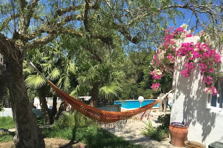 Eco Finca Retreat , Detox & Massage - Jesus - Hus