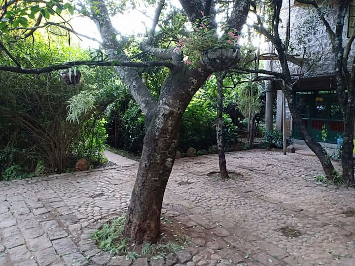 Mount Kenya Apartments#A great place for a getaway