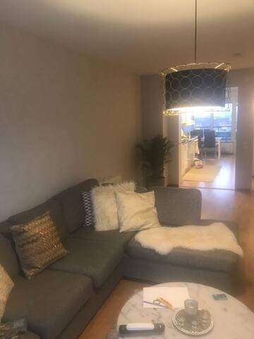 Mysigt och lugn lägenhet mitt i centrum ( Örebro)