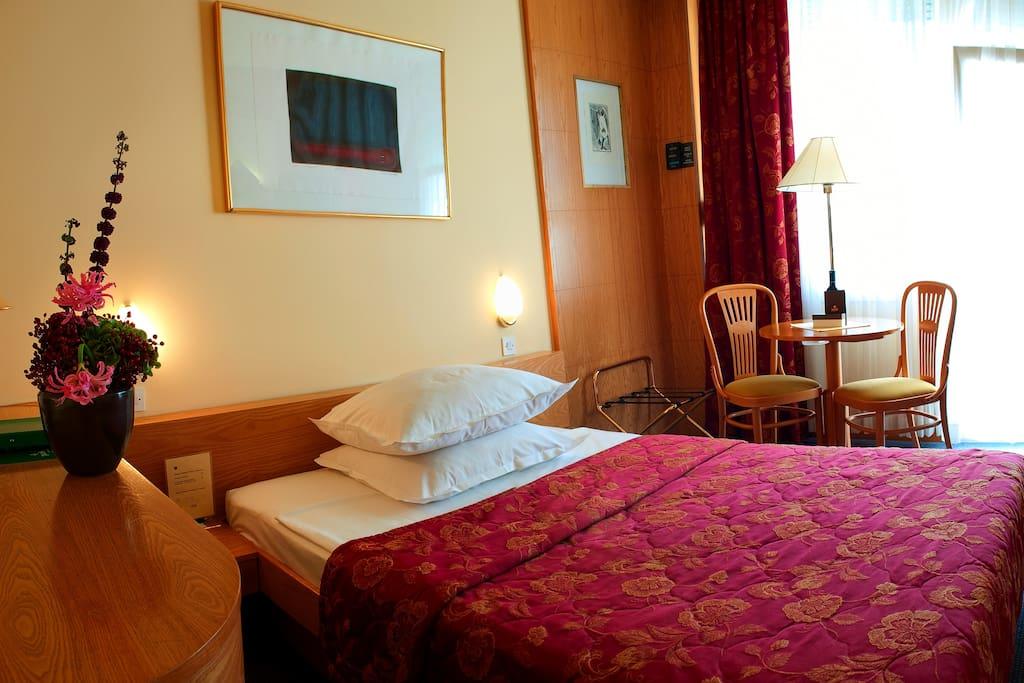 Hotel park chambres d 39 h tes louer nova gorica nova for Chambre hote 94