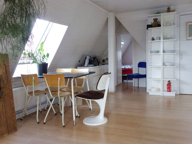 Charming apartment by the river in Cologne
